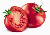 194トマト